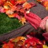 Dormir bien en otoño